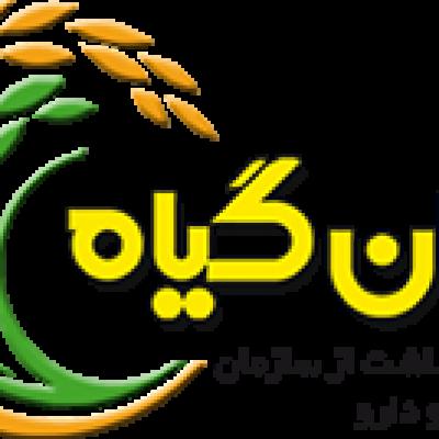 پروژه پروموشن میدانی محصولات ناژوان گیاه (محصولات سبوس گندم و سبوس برنج - دارای مجوز بهداشت از سازمان غذا و دارو)، کلیه پزشکان عمومی، تغذیه، پوست و مو و متخصصان داخلی در مطب ها، ساختمان های پزشکان، درمانگاه ها، کلینیک ها و بیمارستان های مناطق شهری تهران، دی ماه 1399